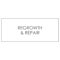 REGROWTH/REPAIR